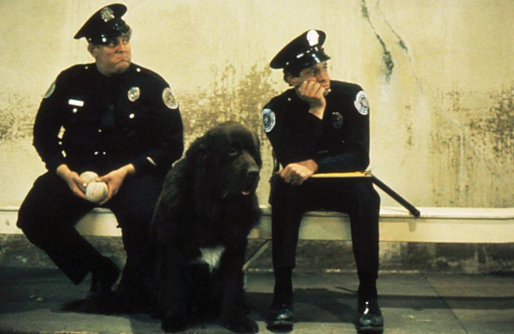 POLICE ACADEMY, Donovan Scott, Steve Guttenberg, 1984, (c) Warner Brothers