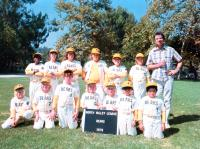 THE BAD NEWS BEARS, (back row): Erin Blunt, Alfred Lutter III, David Pollock, Gary Lee Cavagnaro, Jackie Earle Haley, Tatum O'Neal, Walter Matthau, (front row): Chris Barnes, Jaime O. Escobedo, George Gonzales, 1976