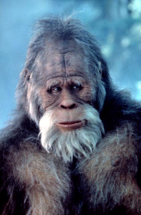 HARRY AND THE HENDERSONS, Kevin Peter, 1987