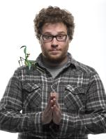"Seth Rogen as the voice of Mantis in ""Kung Fu Panda"""