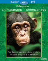 Disneynation: Chimpanzee