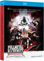 Fullmetal Alchemist Brotherhood - Collection 2