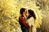 DANCES WITH WOLVES, , Kevin Costner, Mary McDonnell, 1990