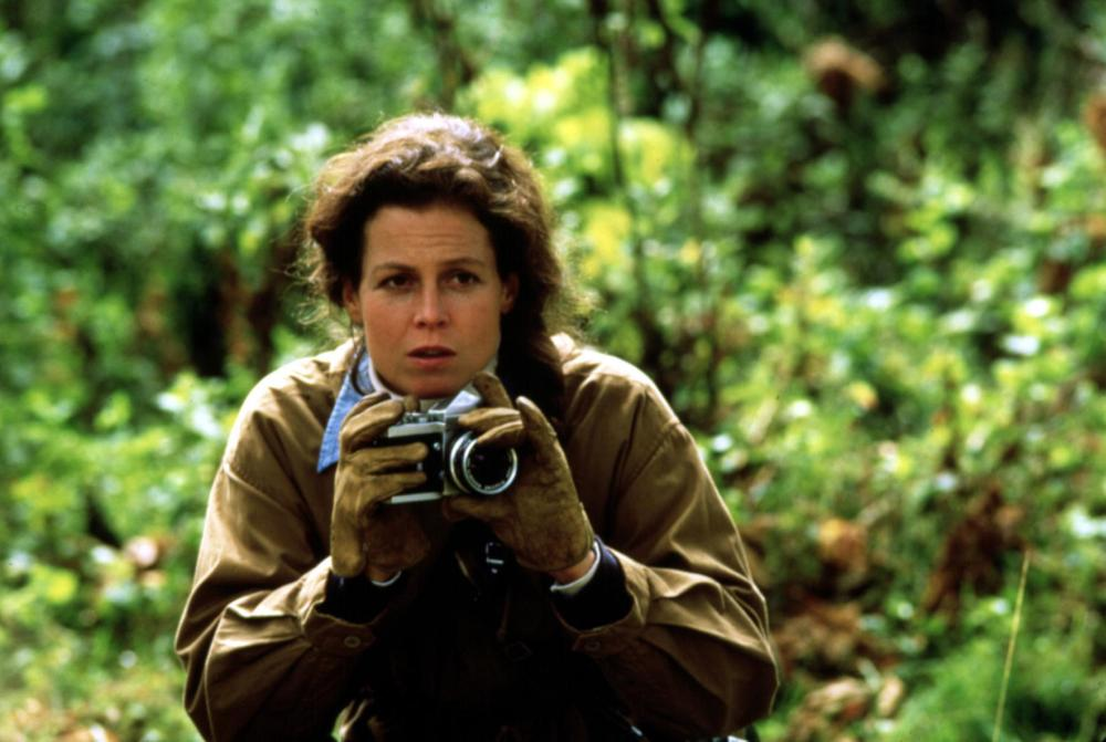 Sigourney Weaver Movies List - YouTube