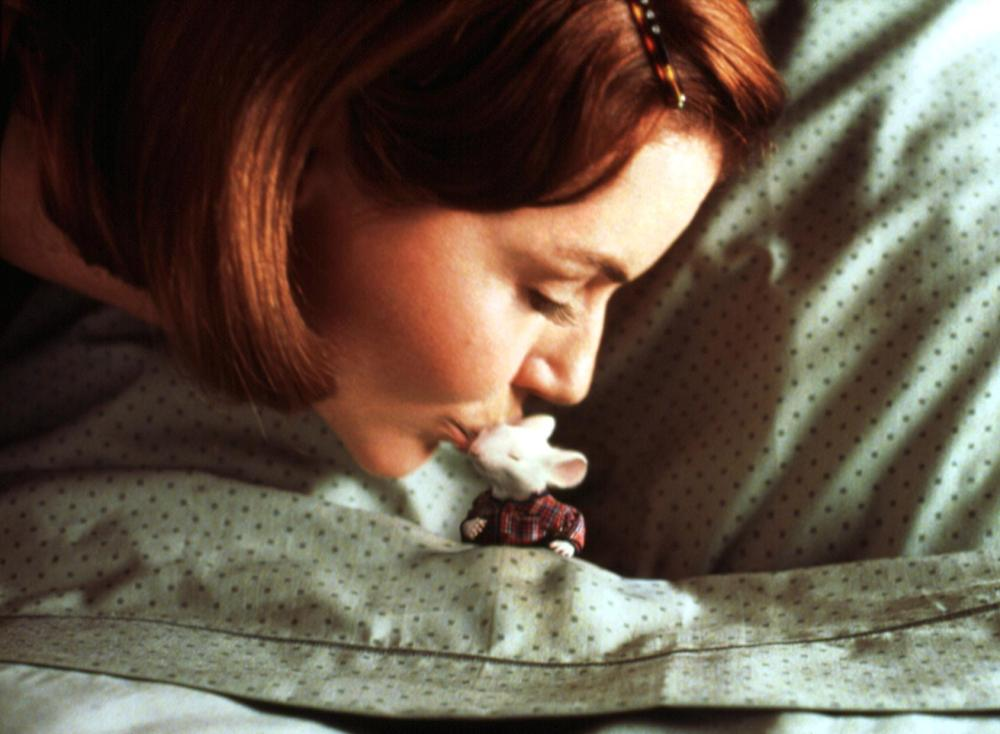 geena davis stuart little - photo #8
