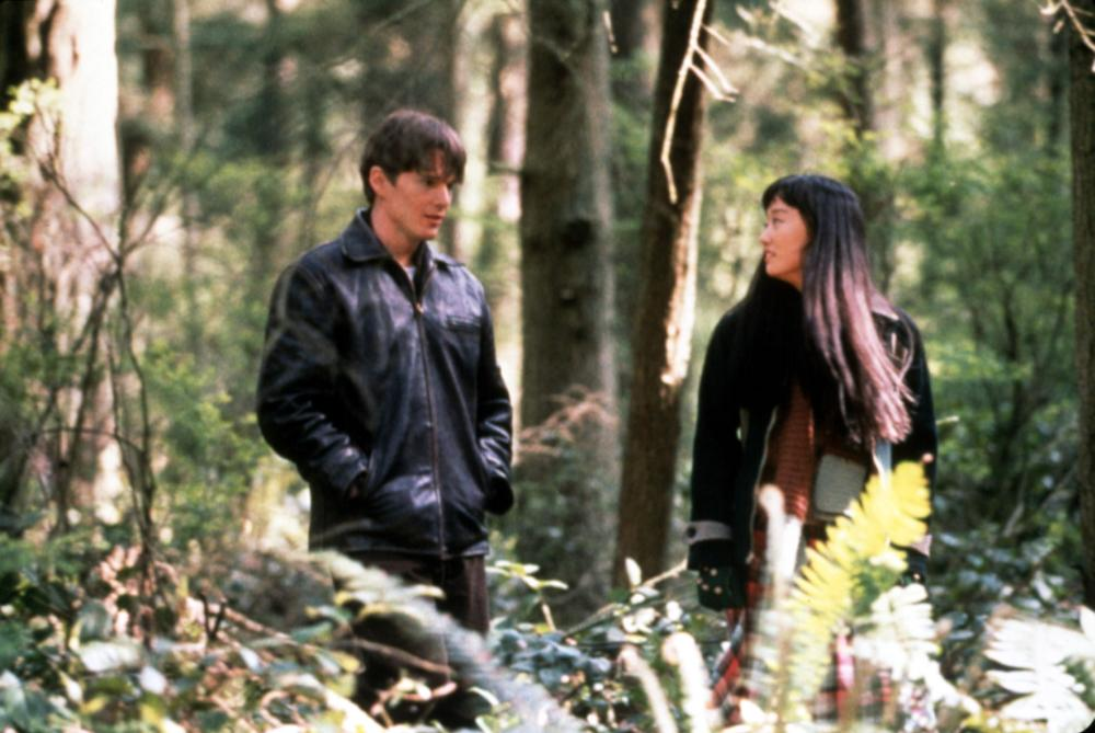 snow falling on cedars the Old passions, prejudices, and grudges surface in a washington state island town  when a japanese man stands trial for the murder of a.
